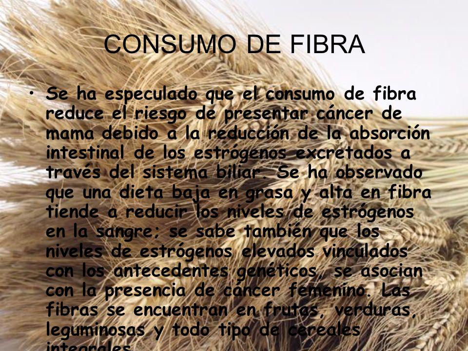 CONSUMO DE FIBRA Se ha especulado que el consumo de fibra reduce el riesgo de presentar cáncer de mama debido a la reducción de la absorción intestina