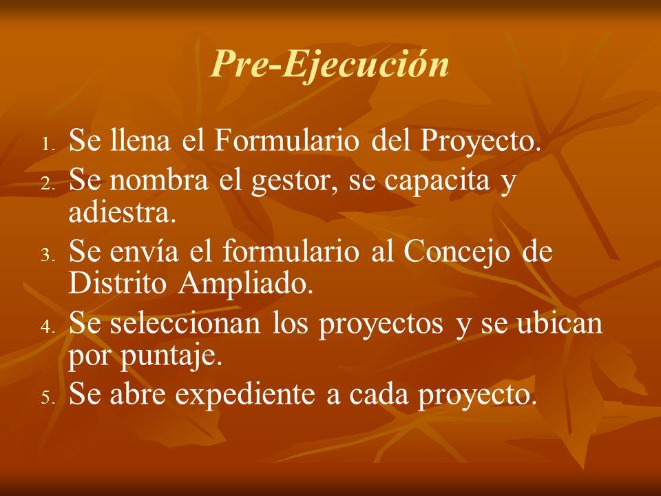 Pre-Ejecución 1. 1. Se llena el Formulario del Proyecto.