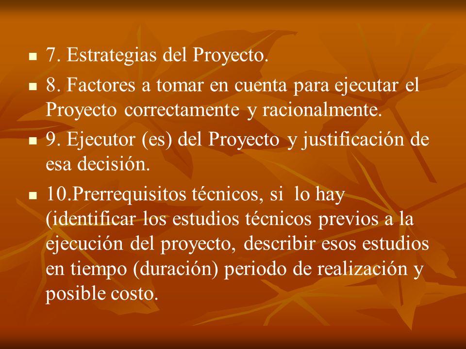 7. Estrategias del Proyecto. 8.