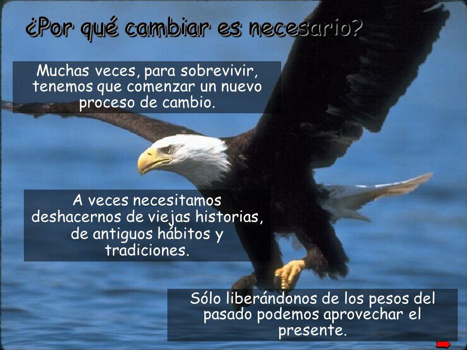30 años más. Y así, tras cinco meses, el águila se lanza al famoso vuelo del renacer y vive por