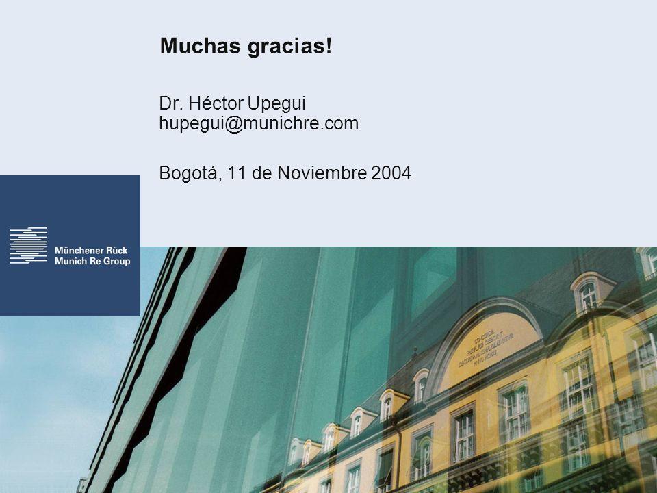 Muchas gracias! Dr. Héctor Upegui hupegui@munichre.com Bogotá, 11 de Noviembre 2004