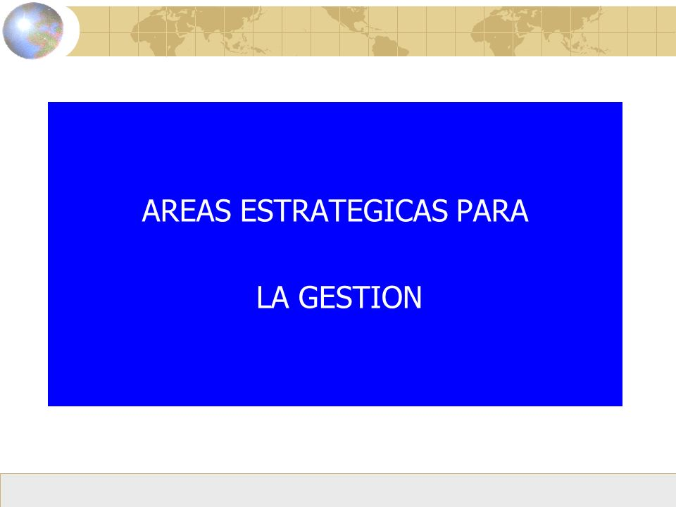 AREAS ESTRATEGICAS PARA LA GESTION