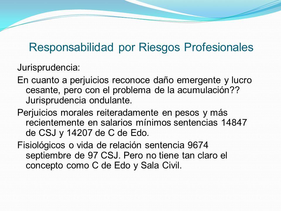 Responsabilidad por Riesgos Profesionales Jurisprudencia: En cuanto a perjuicios reconoce daño emergente y lucro cesante, pero con el problema de la acumulación?.
