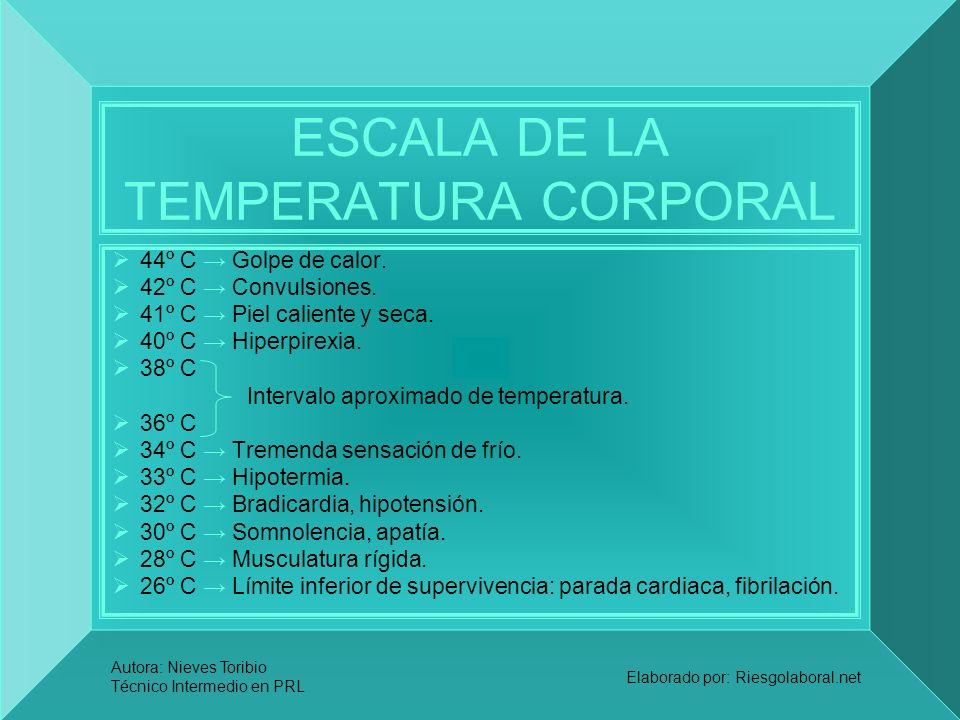 Autora: Nieves Toribio Técnico Intermedio en PRL Elaborado por: Riesgolaboral.net ESCALA DE LA TEMPERATURA CORPORAL 44º C Golpe de calor. 42º C Convul