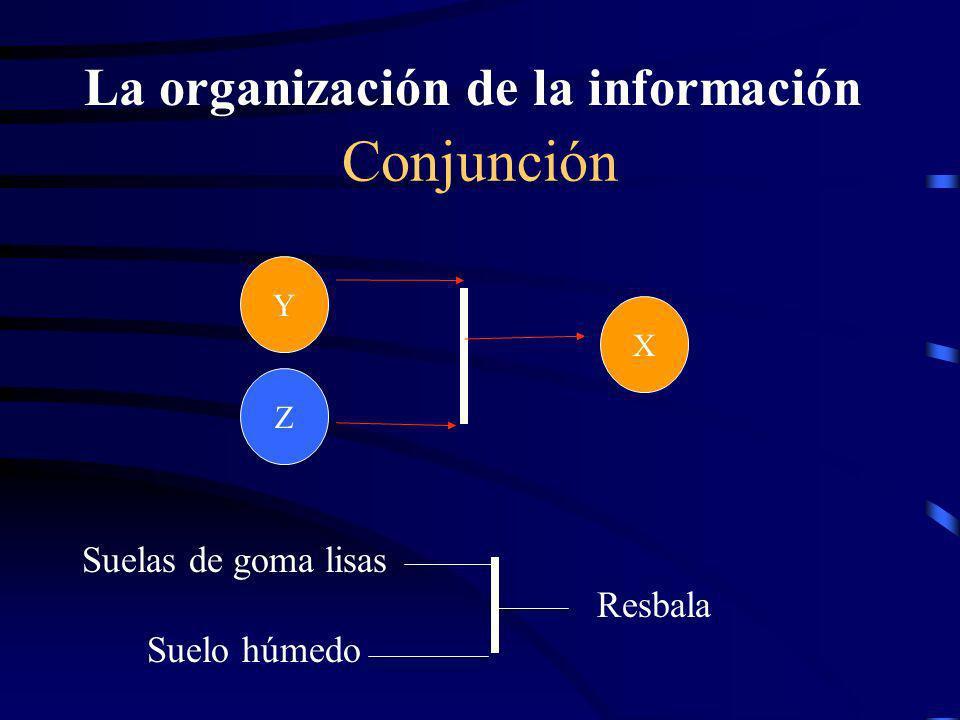 La organización de la información recogida CADENA ¿Qué fue necesario para que se produzca este hecho ? XY LluviaSuelo húmedo