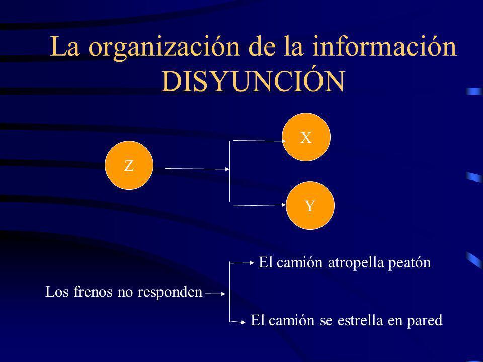 Y Z X La organización de la información Suelas de goma lisas Resbala Suelo húmedo Conjunción