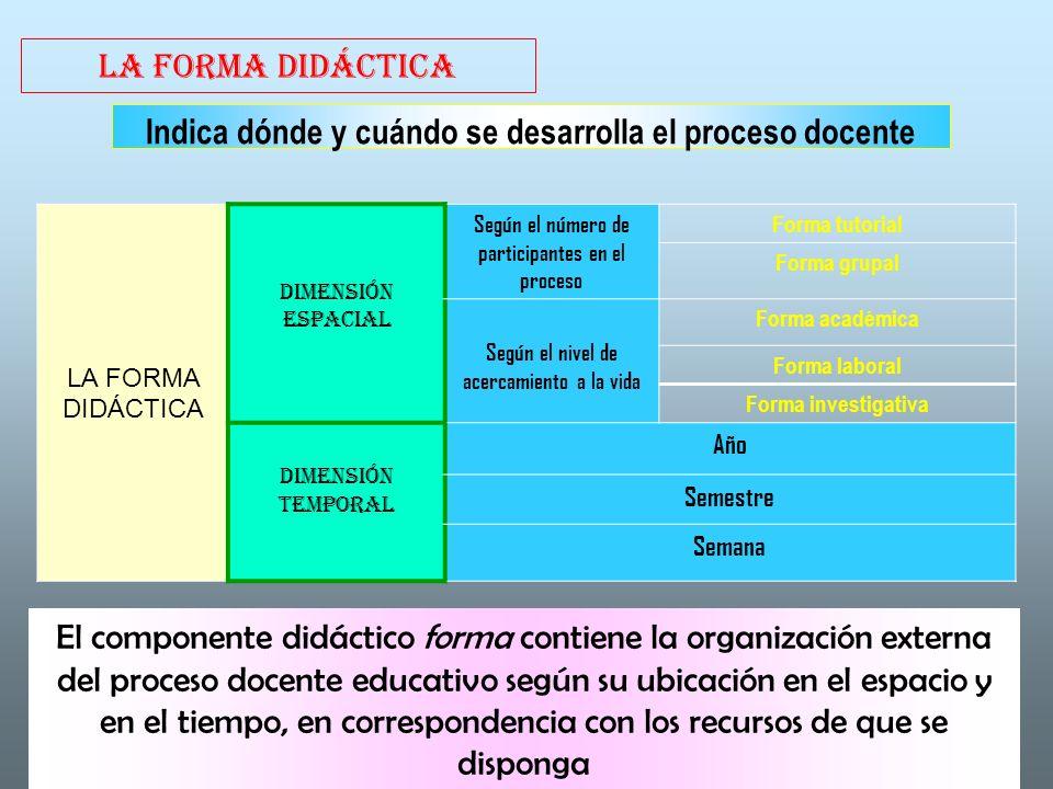 LA FORMA DIDÁCTICA Indica dónde y cuándo se desarrolla el proceso docente LA FORMA DIDÁCTICA DIMENSIÓN ESPACIAL Según el número de participantes en el