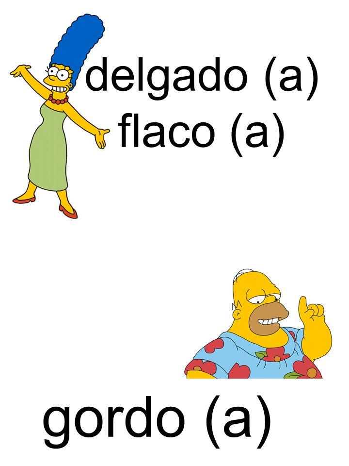 gordo (a) delgado (a) flaco (a)
