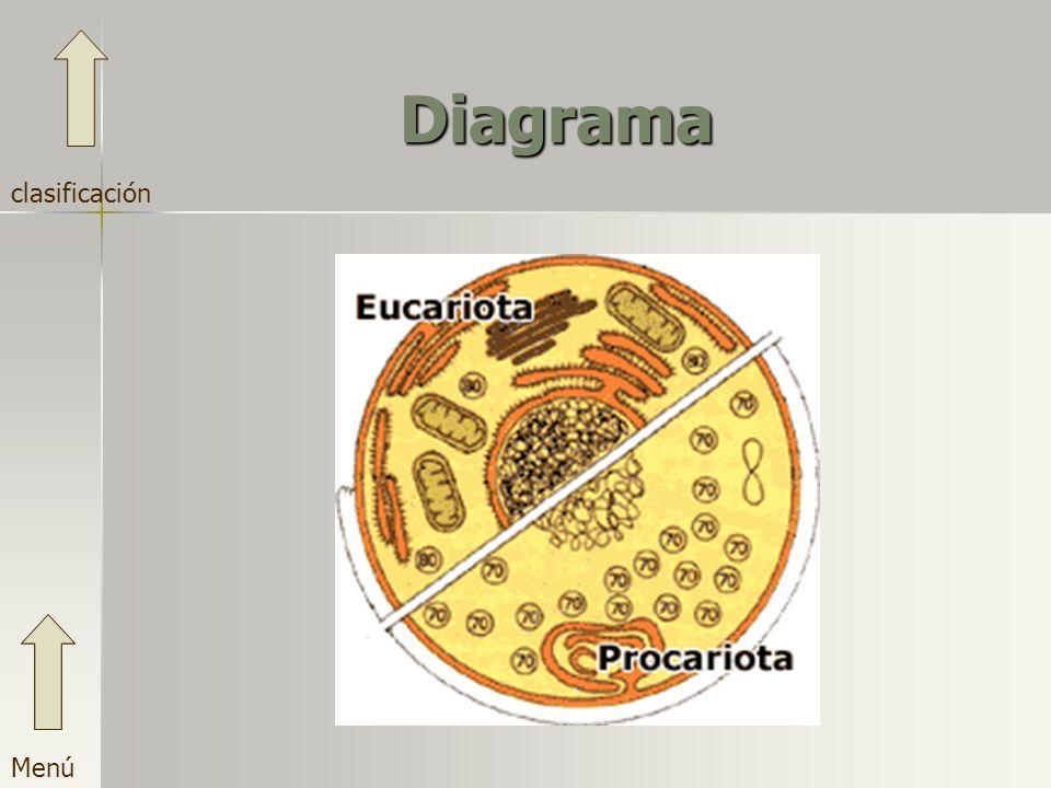 Diagrama Menú clasificación