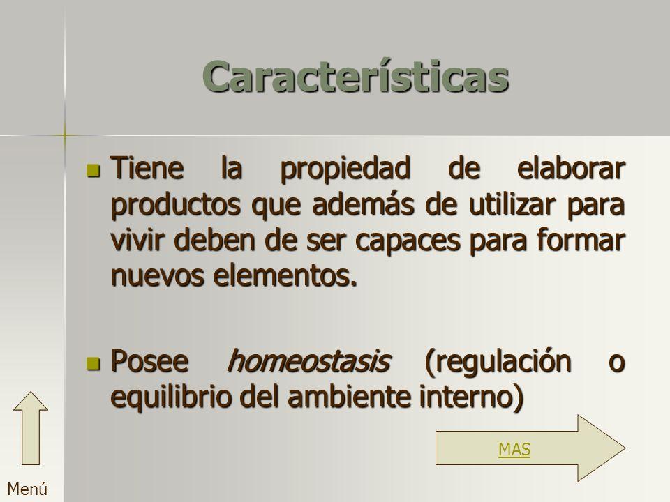 Características Tiene la propiedad de elaborar productos que además de utilizar para vivir deben de ser capaces para formar nuevos elementos. Posee ho