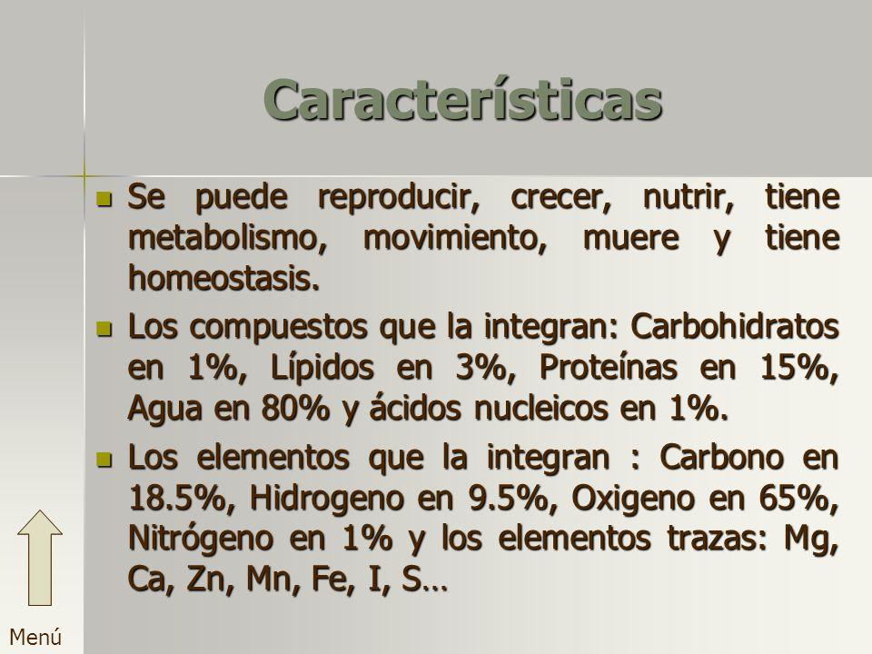 Características Se puede reproducir, crecer, nutrir, tiene metabolismo, movimiento, muere y tiene homeostasis. Los compuestos que la integran: Carbohi