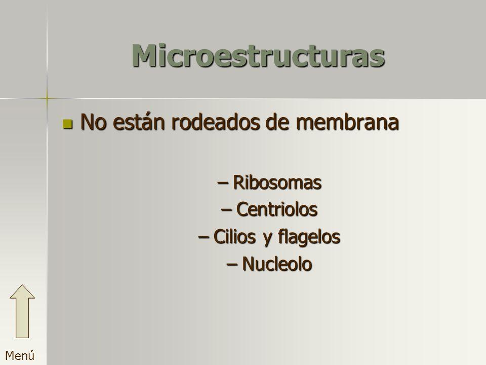 Microestructuras No están rodeados de membrana –R–R–R–Ribosomas –C–C–C–Centriolos –C–C–C–Cilios y flagelos –N–N–N–Nucleolo
