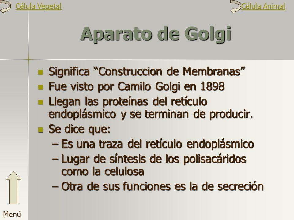 Aparato de Golgi Significa Construccion de Membranas Fue visto por Camilo Golgi en 1898 Llegan las proteínas del retículo endoplásmico y se terminan d
