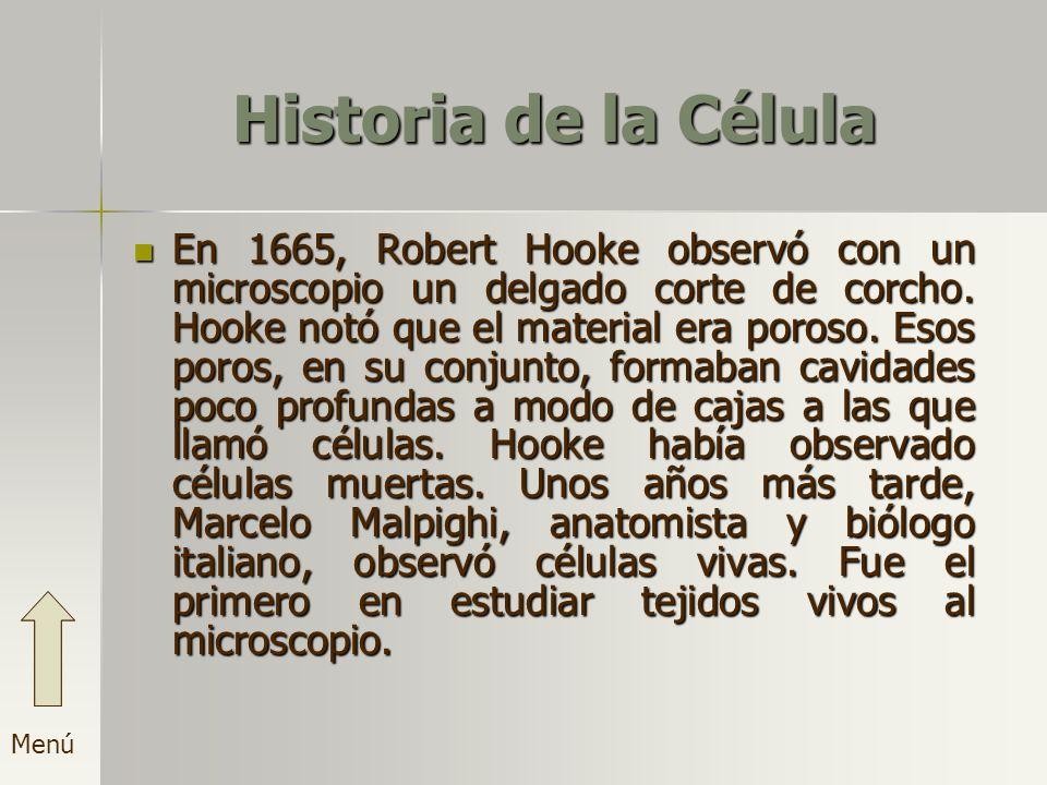 Historia de la Célula En 1665, Robert Hooke observó con un microscopio un delgado corte de corcho. Hooke notó que el material era poroso. Esos poros,