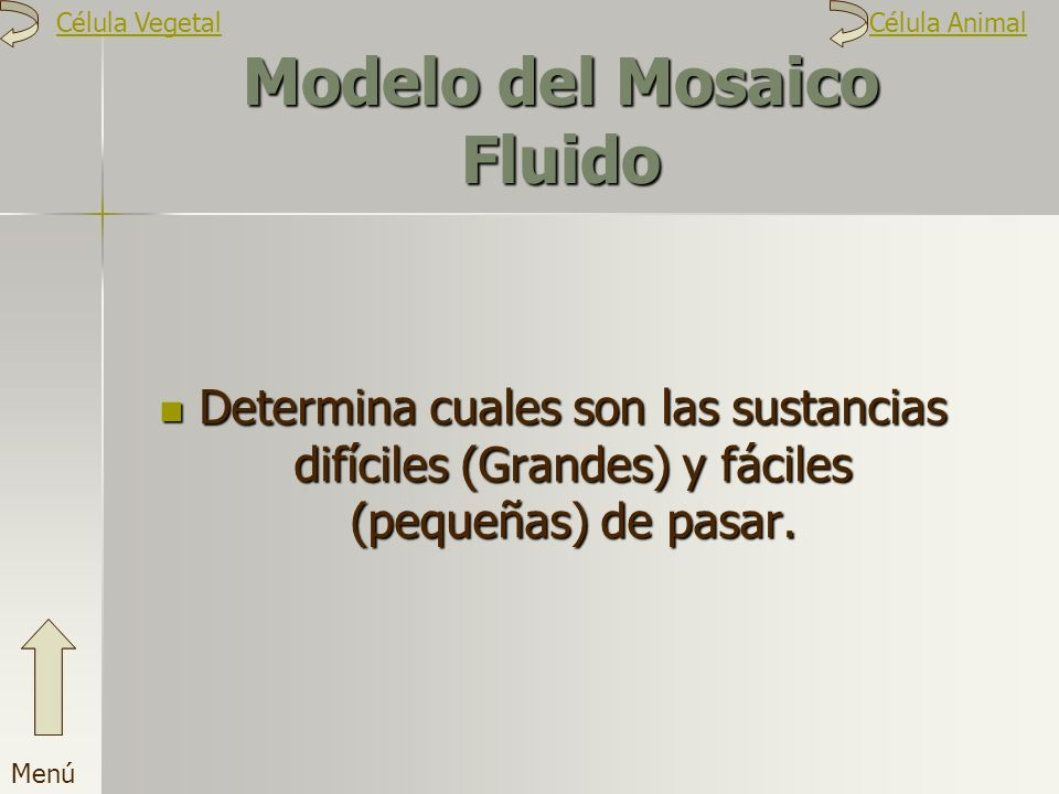 Modelo del Mosaico Fluido Determina cuales son las sustancias difíciles (Grandes) y fáciles (pequeñas) de pasar. Menú Célula VegetalCélula Animal