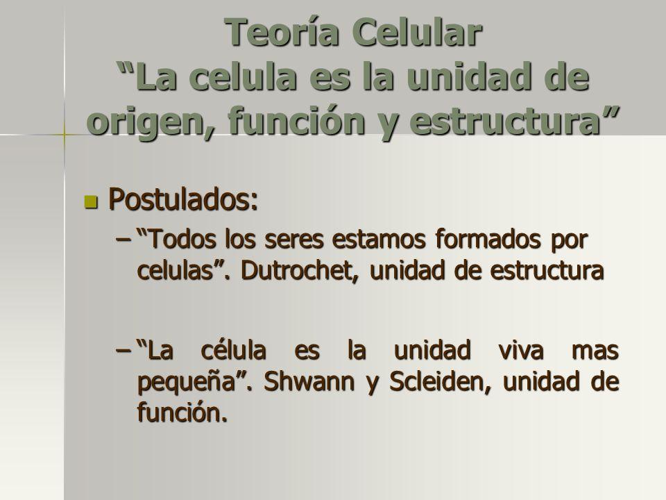 Teoría Celular La celula es la unidad de origen, función y estructura Postulados: –Todos los seres estamos formados por celulas. Dutrochet, unidad de