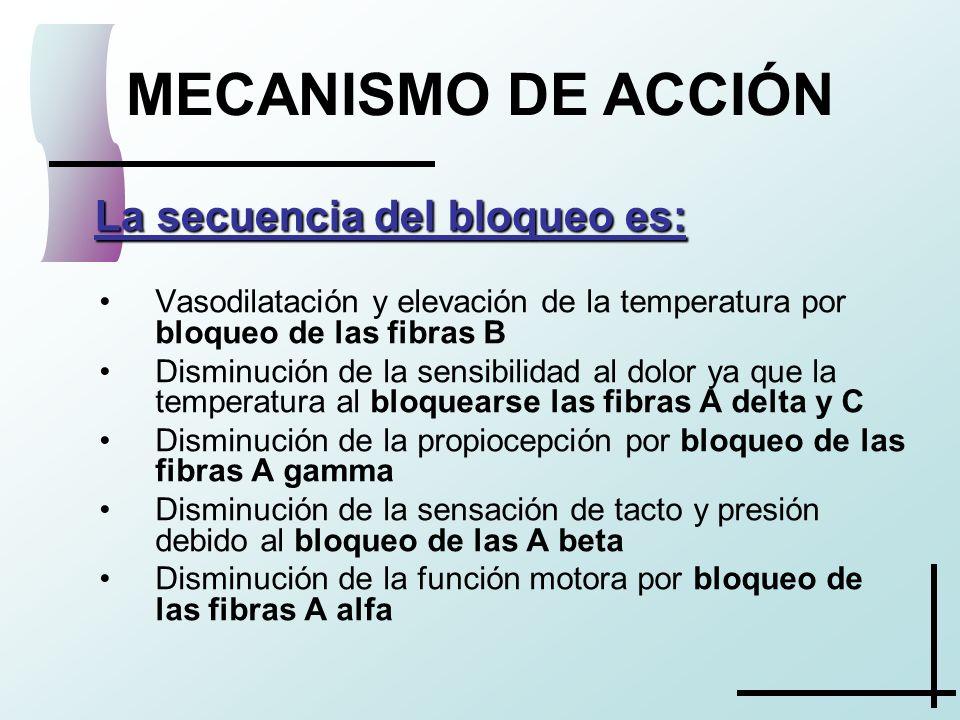 MECANISMO DE ACCIÓN La secuencia del bloqueo es: La secuencia del bloqueo es: Vasodilatación y elevación de la temperatura por bloqueo de las fibras B