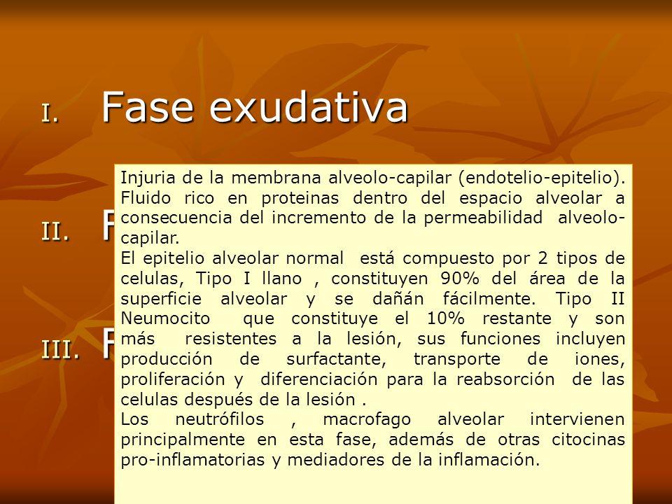 I. F ase exudativa II. F ase proliferativa III. F ase fibrosis Injuria de la membrana alveolo-capilar (endotelio-epitelio). Fluido rico en proteinas d