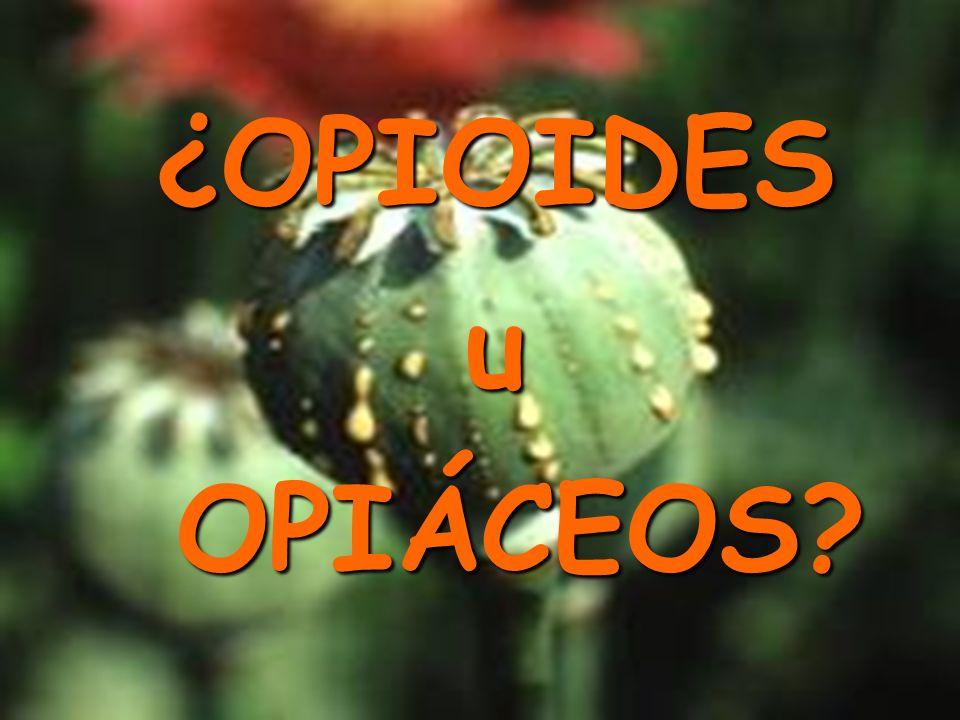 OPIOIDES Receptores:Receptores: μ δ κ Gs