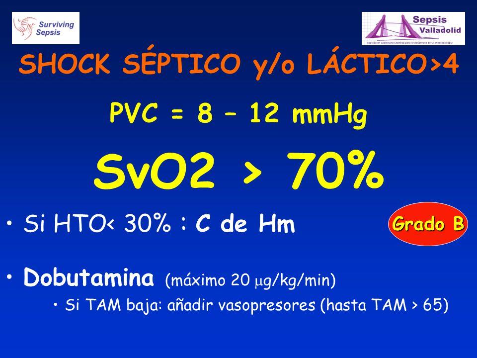 SHOCK SÉPTICO y/o LÁCTICO>4 PVC = 8 – 12 mmHg SvO2 > 70% Si HTO< 30% : C de Hm Dobutamina (máximo 20 g/kg/min) Si TAM baja: añadir vasopresores (hasta