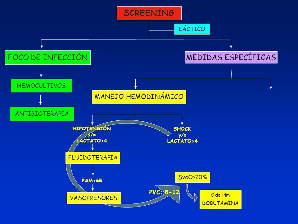 SCREENING FOCO DE INFECCIÓN LÁCTICO MEDIDAS ESPECÍFICAS HEMOCULTIVOS ANTIBIOTERAPIA MANEJO HEMODINÁMICO HIPOTENSIÓN y/o LACTATO>4 SHOCK y/o LACTATO>4
