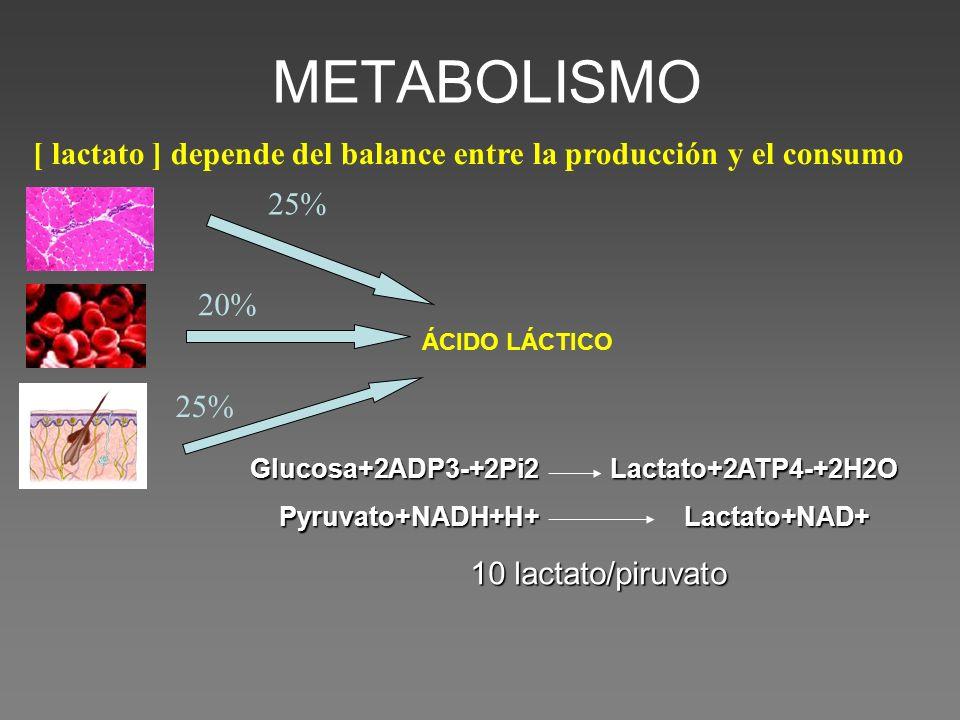 25% [ lactato ] depende del balance entre la producción y el consumo 20% 25% ÁCIDO LÁCTICO Glucosa+2ADP3-+2Pi2 Lactato+2ATP4-+2H2O Pyruvato+NADH+H+ La