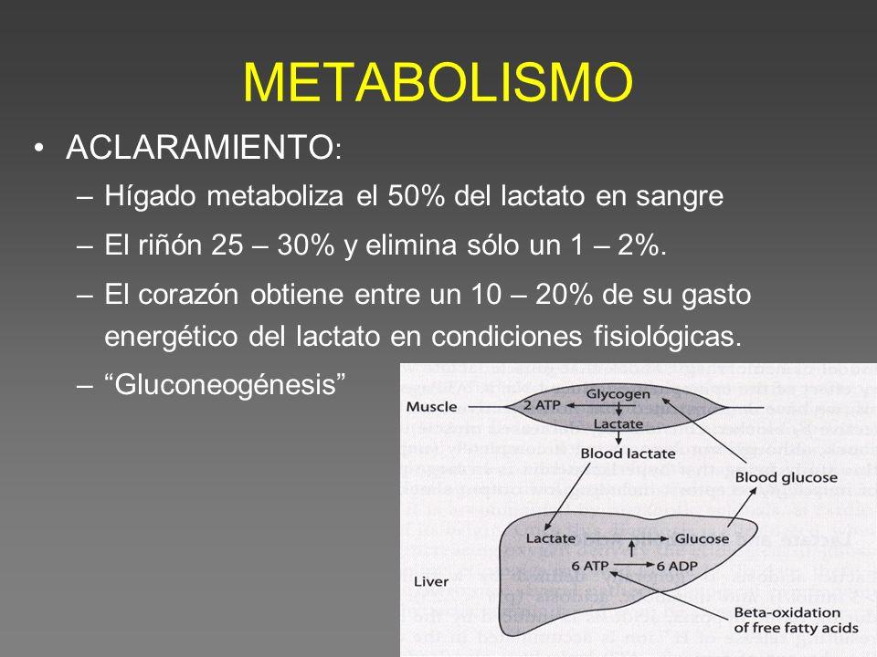 METABOLISMO ACLARAMIENTO : –Hígado metaboliza el 50% del lactato en sangre –El riñón 25 – 30% y elimina sólo un 1 – 2%. –El corazón obtiene entre un 1