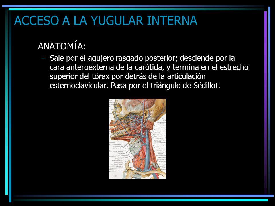 ACCESO A LA YUGULAR INTERNA ANATOMÍA: –Sale por el agujero rasgado posterior; desciende por la cara anteroexterna de la carótida, y termina en el estr
