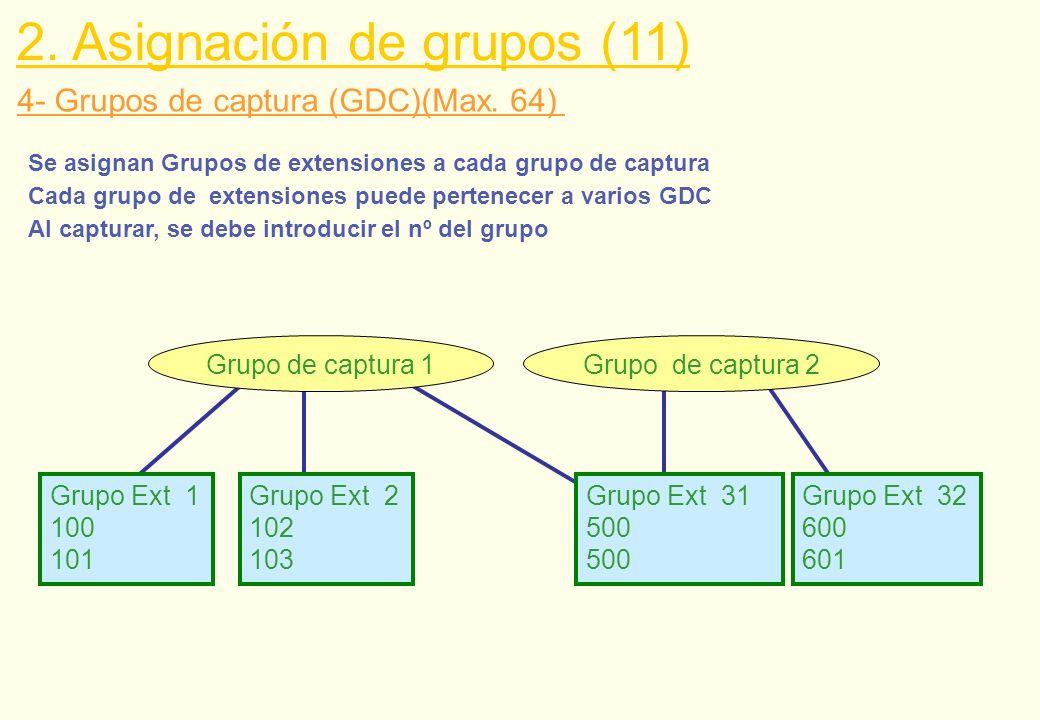 4- Grupos de captura (GDC)(Max. 64) Grupo de captura 2Grupo de captura 1 Grupo Ext 1 100 101 Grupo Ext 2 102 103 Grupo Ext 31 500 Grupo Ext 32 600 601