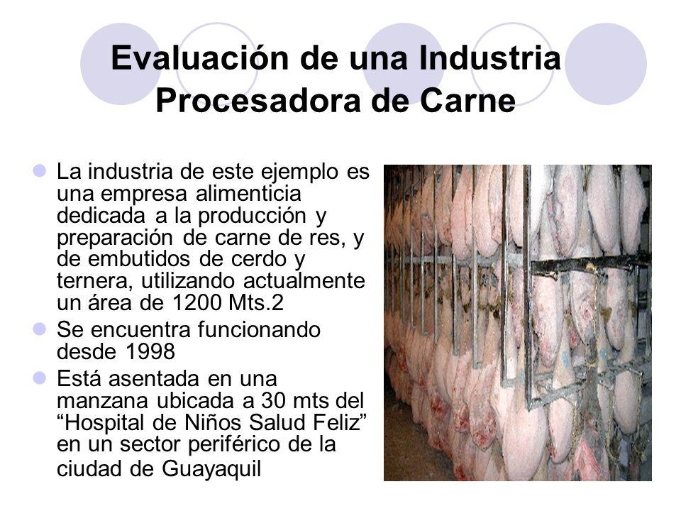 La industria de este ejemplo es una empresa alimenticia dedicada a la producción y preparación de carne de res, y de embutidos de cerdo y ternera, uti