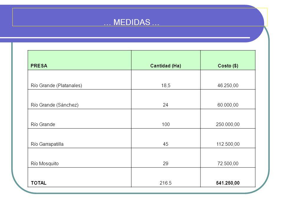 … MEDIDAS … PRESACantidad (Ha)Costo ($) Río Grande (Platanales)18,546.250,00 Río Grande (Sánchez)2460.000,00 Río Grande100250.000,00 Río Garrapatilla4