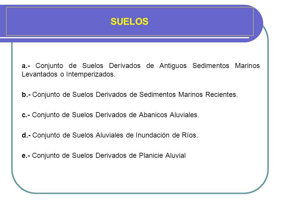 SUELOS a.- Conjunto de Suelos Derivados de Antiguos Sedimentos Marinos Levantados o Intemperizados. b.- Conjunto de Suelos Derivados de Sedimentos Mar