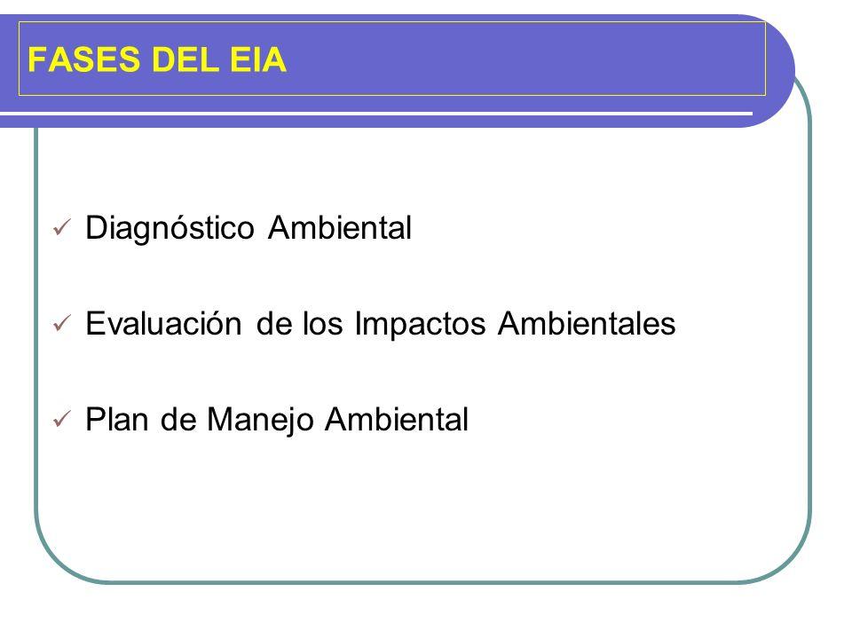 FASES DEL EIA Diagnóstico Ambiental Evaluación de los Impactos Ambientales Plan de Manejo Ambiental