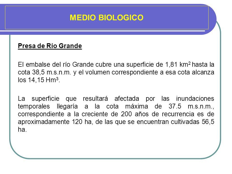 MEDIO BIOLOGICO Presa de Río Grande El embalse del río Grande cubre una superficie de 1,81 km 2 hasta la cota 38,5 m.s.n.m. y el volumen correspondien