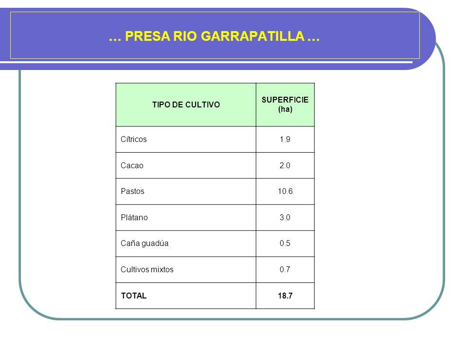 … PRESA RIO GARRAPATILLA … TIPO DE CULTIVO SUPERFICIE (ha) Cítricos1.9 Cacao2.0 Pastos10.6 Plátano3.0 Caña guadúa0.5 Cultivos mixtos0.7 TOTAL18.7