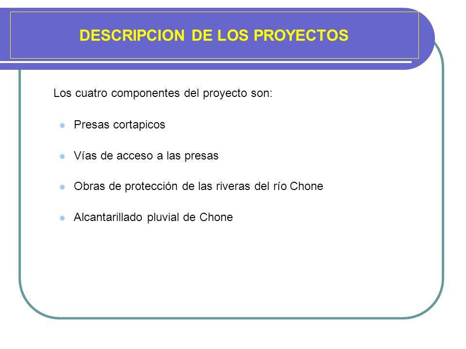 DESCRIPCION DE LOS PROYECTOS Los cuatro componentes del proyecto son: Presas cortapicos Vías de acceso a las presas Obras de protección de las riveras