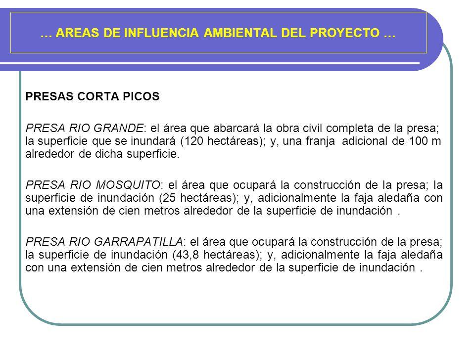 … AREAS DE INFLUENCIA AMBIENTAL DEL PROYECTO … PRESAS CORTA PICOS PRESA RIO GRANDE: el área que abarcará la obra civil completa de la presa; la superf