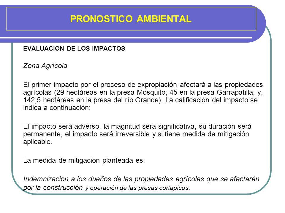 PRONOSTICO AMBIENTAL EVALUACION DE LOS IMPACTOS Zona Agrícola El primer impacto por el proceso de expropiación afectará a las propiedades agrícolas (2