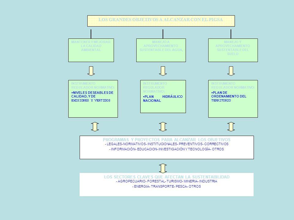 El PIGSA fue formulado a través de las siguientes componentes: 1. Diagnostico socio – ambiental. 2. Ordenamiento territorial. 3. Plan regional hidrául