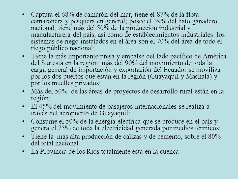 Captura el 68% de camarón del mar, tiene el 87% de la flota camaronera y pesquera en general; posee el 39% del hato ganadero nacional; tiene más del 50% de la producción industrial y manufacturera del país, así como de establecimientos industriales: los sistemas de riego instalados en el área son el 70% del área de todo el riego público nacional; Tiene la más importante presa y embalse del lado pacífico de América del Sur está en la región; más del 90% del movimiento de toda la carga general de importación y exportación del Ecuador se moviliza por los dos puertos que están en la región (Guayaquil y Machala) y por los muelles privados; Más del 50% de las áreas de proyectos de desarrollo rural están en la región; El 45% del movimiento de pasajeros internacionales se realiza a través del aeropuerto de Guayaquil: Consume el 50% de la energía eléctrica que se produce en el país y genera el 75% de toda la electricidad generada por medios térmicos; Tiene la más alta producción de calizas y de cemento, sobre el 80% del total nacional La Provincia de los Ríos totalmente esta en la cuenca