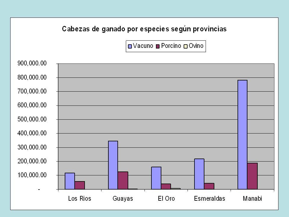 Captura el 68% de camarón del mar, tiene el 87% de la flota camaronera y pesquera en general; posee el 39% del hato ganadero nacional; tiene más del 5