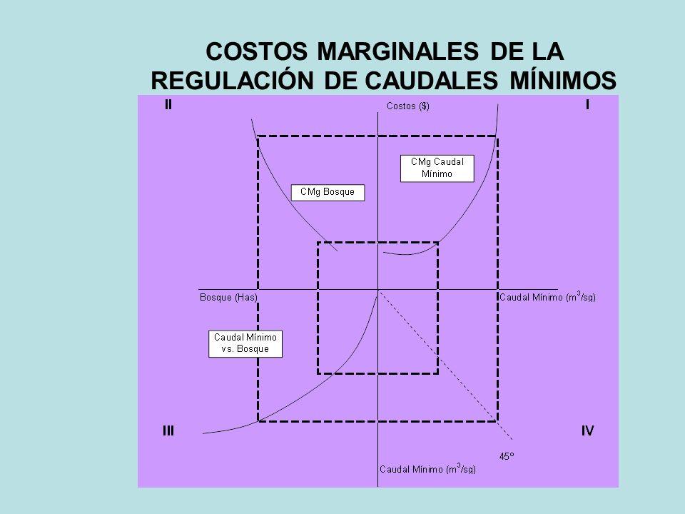 Actualización del Plan Regional Hidráulico