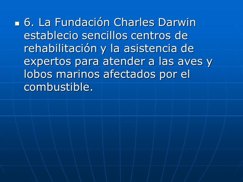 5. Desde el día que empezó el derrame el Servicio Parque Nacional Galápagos, la Estación Científica Charles Darwin, voluntarios locales y los pescador