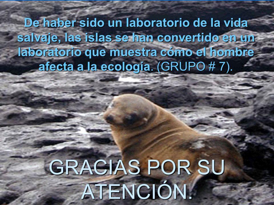 No tenía registrado un seguro por daños ambientales a terceros, como, en este caso, el parque nacional Galápagos. No tenía registrado un seguro por da