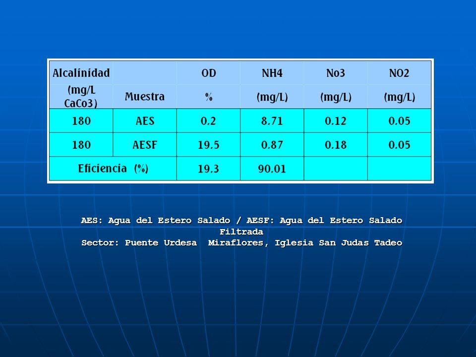 Estudios realizados en Septiembre de 1992 y Marzo de 1993 reportan que hay un rango de la media para las concentraciones de oxígeno disuelto (DO) en la superficie de Estudios realizados en Septiembre de 1992 y Marzo de 1993 reportan que hay un rango de la media para las concentraciones de oxígeno disuelto (DO) en la superficie deoxígeno disueltooxígeno disuelto 3.84-7.17 ml/l, con valores medios que se incrementan de 3.84-7.17 ml/l, con valores medios que se incrementan de 4.75 ml/l en Septiembre 4.75 ml/l en Septiembre a 5.98 ml/l en Marzo.