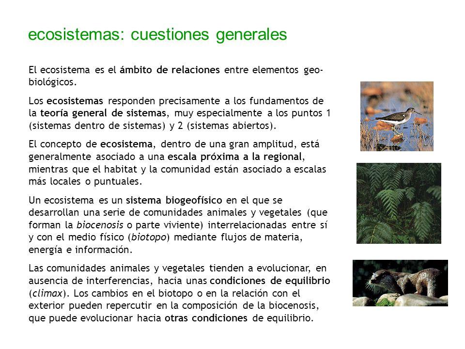 ecosistemas: cuestiones generales El ecosistema es el ámbito de relaciones entre elementos geo- biológicos. Los ecosistemas responden precisamente a l