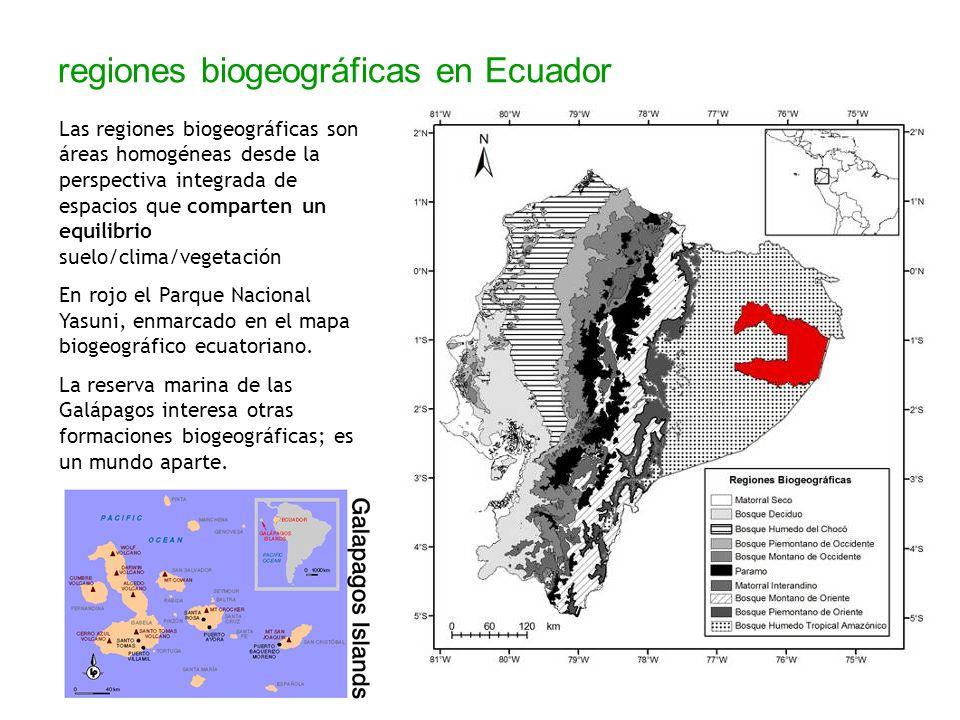regiones biogeográficas en Ecuador Las regiones biogeográficas son áreas homogéneas desde la perspectiva integrada de espacios que comparten un equili