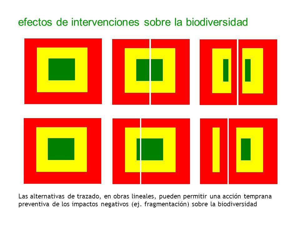efectos de intervenciones sobre la biodiversidad Las alternativas de trazado, en obras lineales, pueden permitir una acción temprana preventiva de los