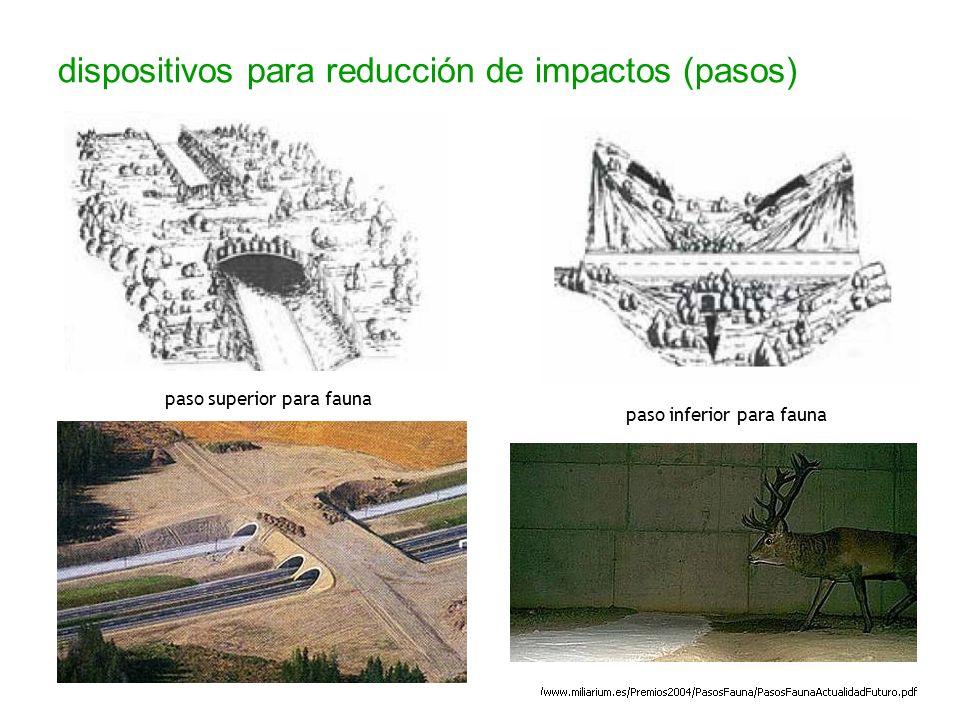 dispositivos para reducción de impactos (pasos) paso superior para fauna paso inferior para fauna