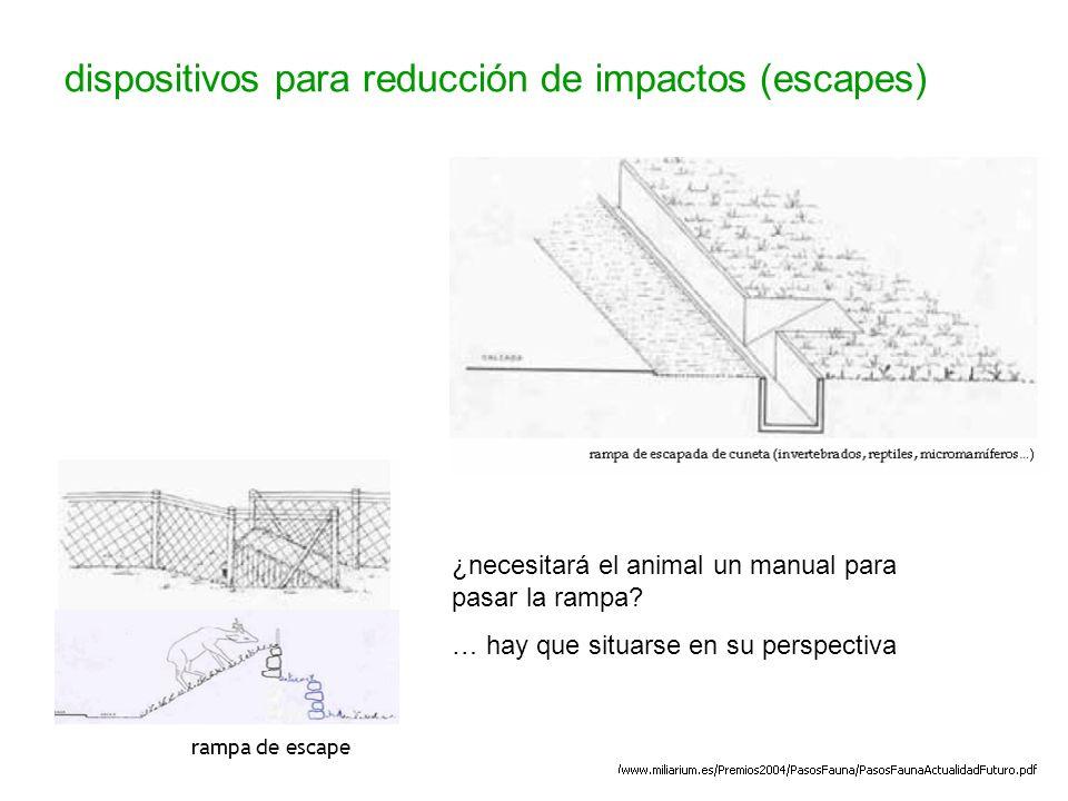 dispositivos para reducción de impactos (escapes) rampa de escape ¿necesitará el animal un manual para pasar la rampa? … hay que situarse en su perspe